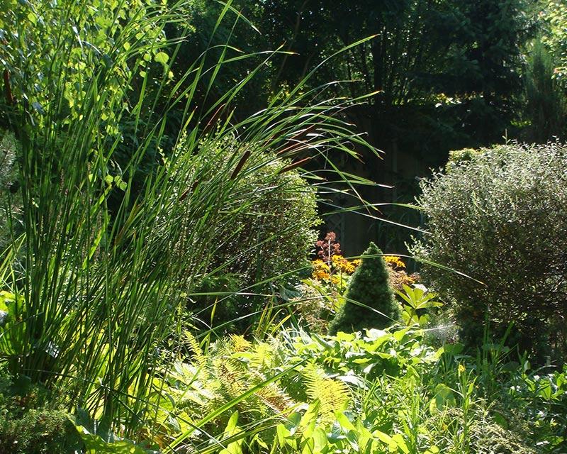 Ogród prywatny w Brwinowie