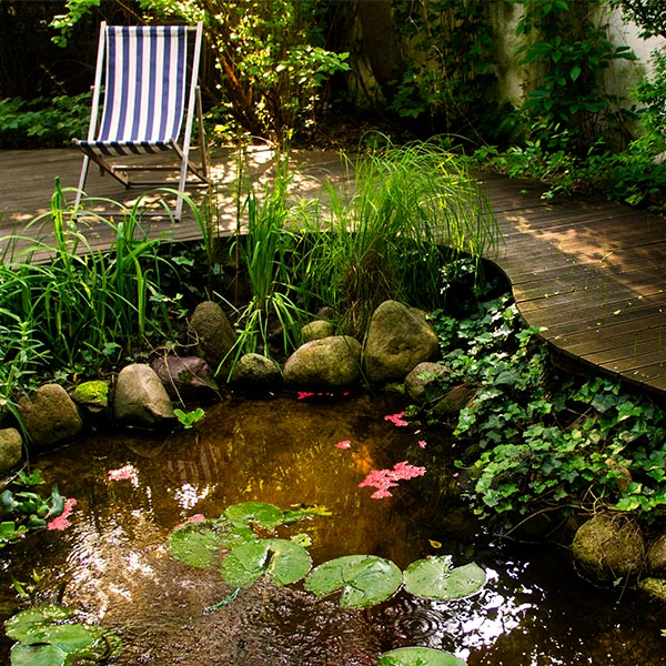 Ogród w Kaniach