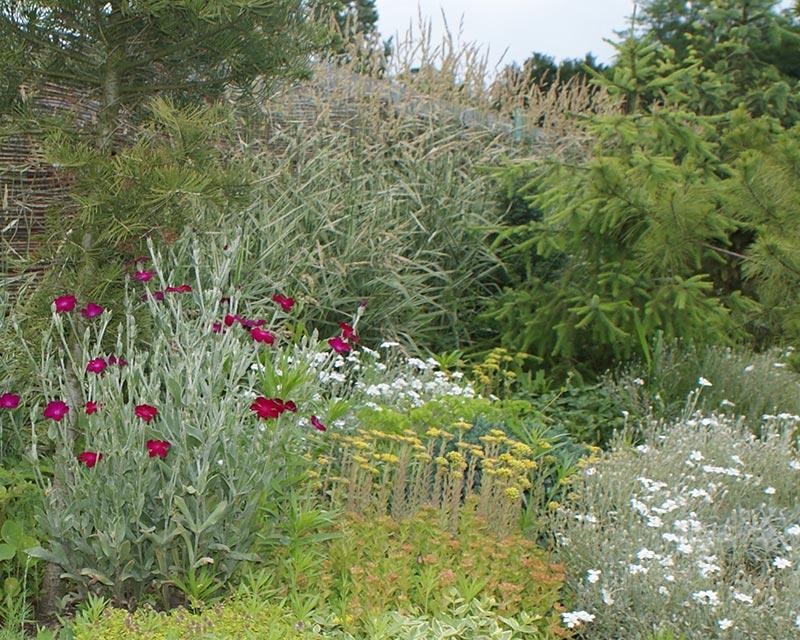 Ogród w Osowcu