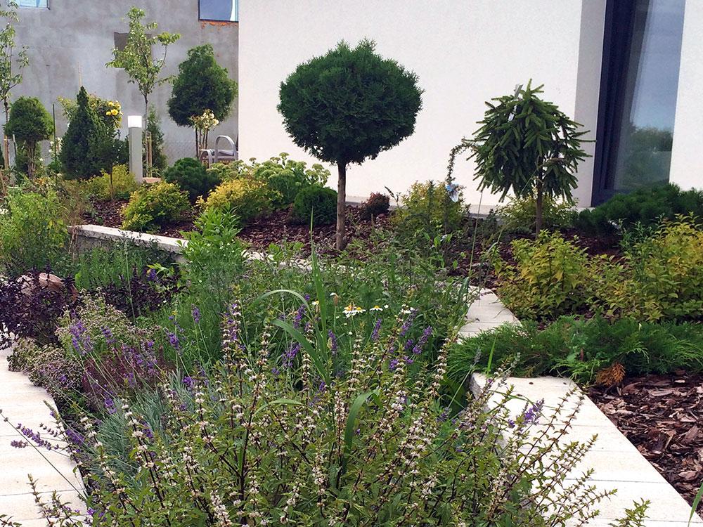 ogród prywatny w Komorowie