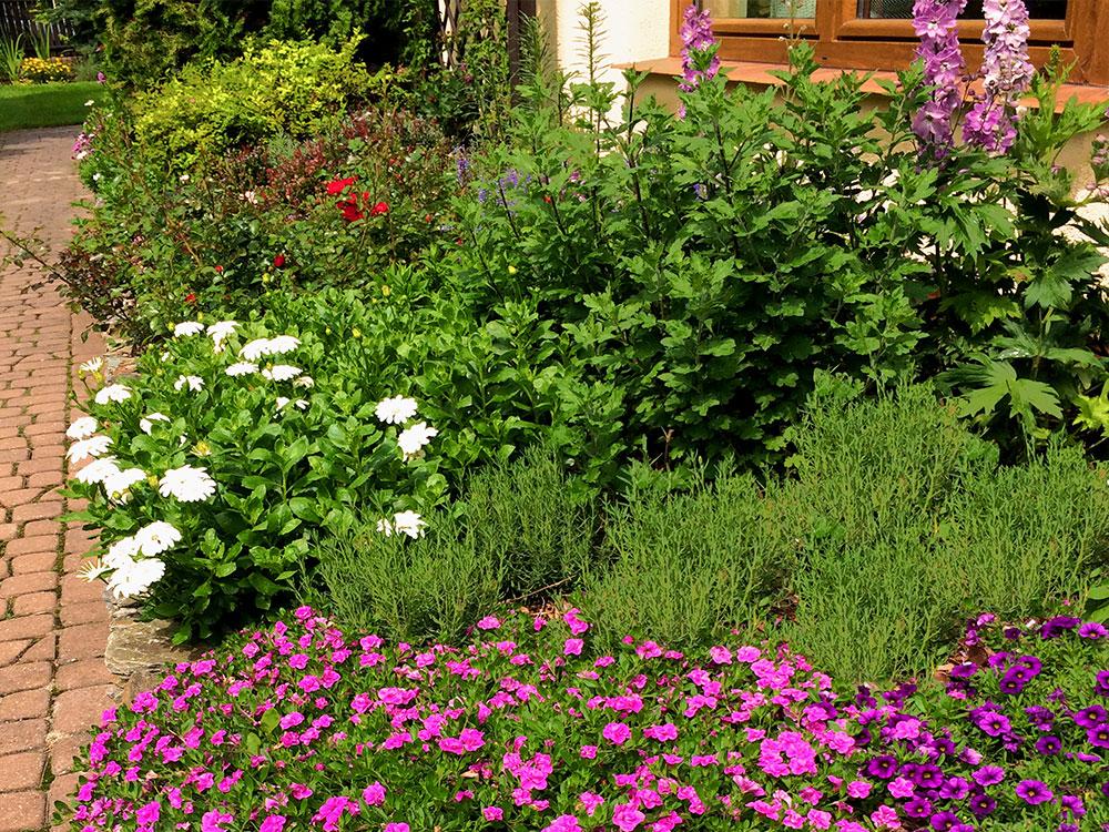 ogrod prywatny wiosenna